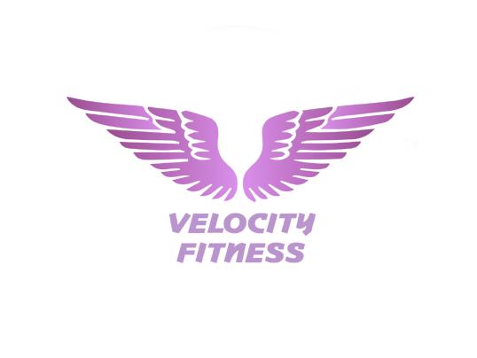 Velocity Fitness Logo Design
